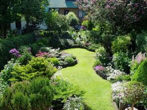 Small Garden Planting Ideas Uk PDF